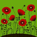 Bright green background with red poppies Stock Images
