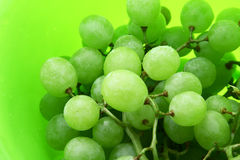 Bright green background with wet grape Stock Image