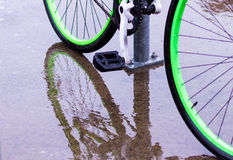 Bright green bicycle wheels and reflection. Bicycle with bright green rims and reflection on wet pavement Stock Photography