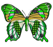 Bright green butterfly Royalty Free Stock Photo