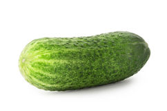 Bright green cucumber Stock Images