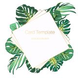 Bright green exotic tropical jungle palm tree monstera leaves. Square rhombus border frame card banner poster template. Square rhombus border frame template vector illustration