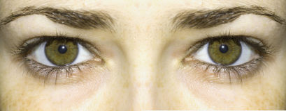 Bright green eyes Royalty Free Stock Images