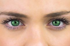 Bright green eyes on pretty female face Stock Photo