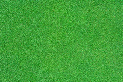 Bright green grass Stock Image