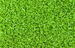 Bright Green Grass Background Stock Photo