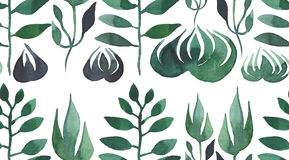 Bright green grass and leaves seamless pattern watercolor Royalty Free Stock Images