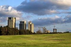 Park & Buildings. Bright green grassy hill at a park, with a line of dark green trees bordering the park from the concrete urban scenery, on the background Stock Images