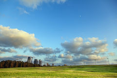 Park & Buildings. Bright green grassy hill at a park, with a line of dark green trees bordering the park from the concrete urban scenery, on the background Stock Photos