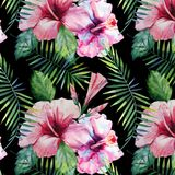 Bright green herbal tropical hawaii floral summer pattern of a tropic palm leaves and tropic pink red violet blue flowers hibiscus. Orchid, lily on black royalty free illustration