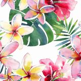 Bright green herbal tropical wonderful hawaii floral summer pattern of a tropic palm leaves and tropic pink red violet blue flower Stock Photography
