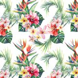 Bright green herbal tropical wonderful hawaii floral summer pattern of a tropic palm leaves and tropic pink red violet blue flower. S hibiscus, orchid, lily stock illustration