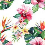 Bright green herbal tropical wonderful hawaii floral summer pattern of a tropic palm leaves and tropic pink red violet blue flower Royalty Free Stock Photography