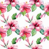 Bright green herbal tropical wonderful hawaii floral summer pattern tropic pink red violet blue flowers hibiscus watercolor Royalty Free Stock Images