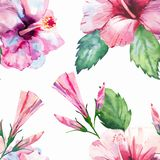Bright green herbal tropical wonderful hawaii floral summer pattern tropic pink red violet blue flowers hibiscus watercolor Royalty Free Stock Photos