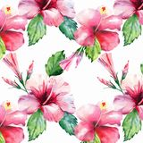 Bright green herbal tropical wonderful hawaii floral summer pattern tropic pink red violet blue flowers hibiscus watercolor hand i. Llustration. Perfect for vector illustration