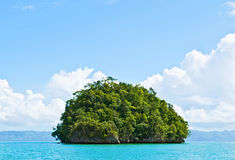 Bright green island Stock Images