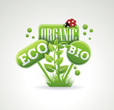 Bright green label with leaves for organic, natural, eco Stock Photo