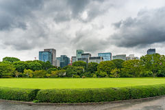 Bright green lawn and trees with modern cityscape on the backgro Royalty Free Stock Photography