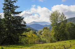 Bright green mountains in the summer royalty free stock images