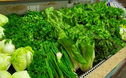 Bright Green Produce in Grocery Store Bin Stock Images