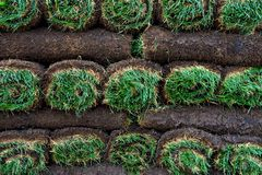 Bright green rolls of sod Royalty Free Stock Images