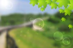 Bright green summer landscape vector design Royalty Free Stock Photos