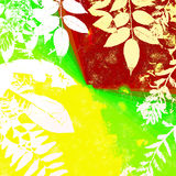 Bright Grunge Leaves Silhouette Royalty Free Stock Photo