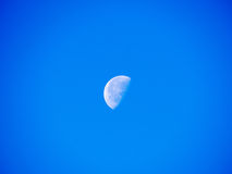 Bright half moon in the sky of noon Stock Photo
