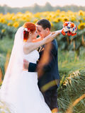 Bright happy redhair bride and groom lovingly look at each other in the sunny sunflower field Royalty Free Stock Images