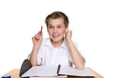 Bright happy school boy Royalty Free Stock Photography