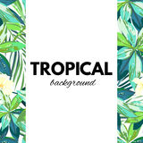 Bright hawaiian design with tropical plants and hibiscus flowers Royalty Free Stock Image