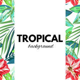 Bright hawaiian design with tropical plants and hibiscus flowers Royalty Free Stock Photos