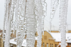 Bright icicles which are hanging down from a roof. Ice texture Royalty Free Stock Photo