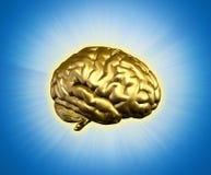 A Bright Idea Stock Image