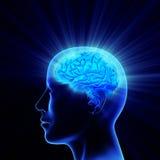 Bright Idea. Man head with shining brain Stock Photos