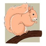 Bright illustration of cartoon sitting on branch squirrel on green background. Vector art of cute little animal good for different royalty free illustration