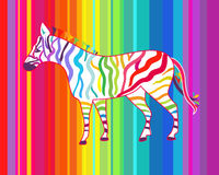 Bright illustration with zebra Stock Photography