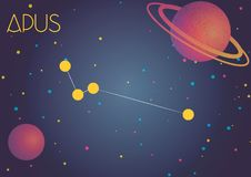 The constellation Apus. Bright image of the constellation Apus. Kids who are fond of astronomy will like it very much Royalty Free Illustration