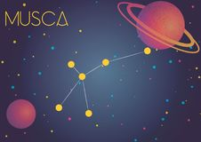 The constellation Musca. Bright image of the constellation Musca. Kids who are fond of astronomy will like it very much royalty free illustration