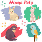 Bright images of domestic animals cat, parrot, rat and rabbit. Can be used for pet shops, clinics, pet food advertising. Royalty Free Stock Photography