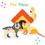 Bright images of domestic animals parrot, dog and ferret.. Can be used for pet shops, clinics, pet food advertising Royalty Free Stock Photos
