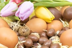 Close-up of Easter basket with various chicken, quail and chocolate eggs and tulips royalty free stock photos