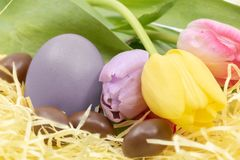 Easter egg painted lavender color and pastel tulips with chocolate eggs for easter. Bright images on the theme of Easter and the arrival of Spring royalty free stock photo