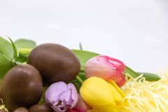 Graphic resource with text box, chocolate eggs and pastel tulips for Easter royalty free stock images