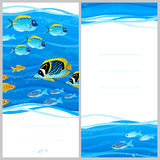 Bright invitation cards with sea elements. Royalty Free Stock Photography