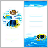 Bright invitation cards with sea elements. Stock Images