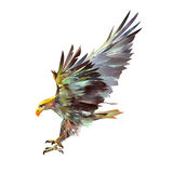 Bright isolated illustration of a flying eagle. Bright isolated art of a flying eagle royalty free illustration