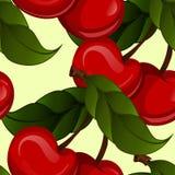 Bright jucy fresh cherry fruit vector. Cherries Stock Photos