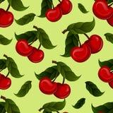 Bright jucy fresh cherry fruit vector. Cherries Stock Images